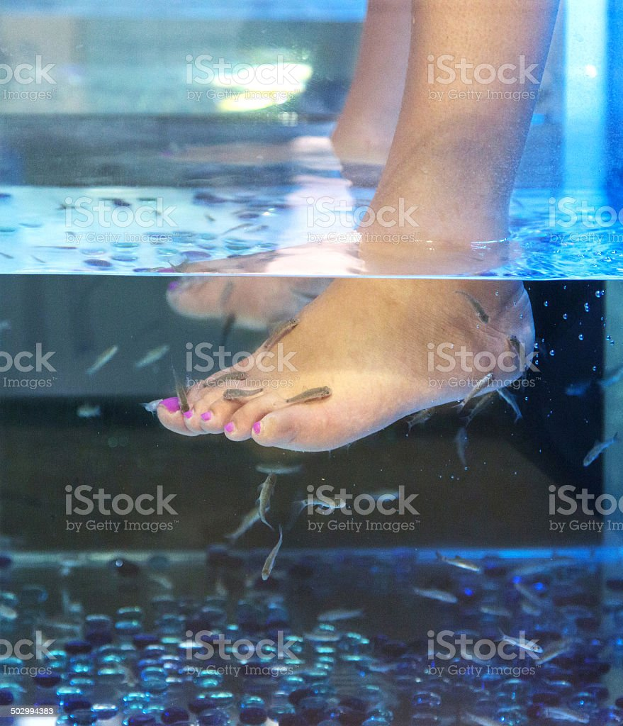Doctor fish spa treatment stock photo