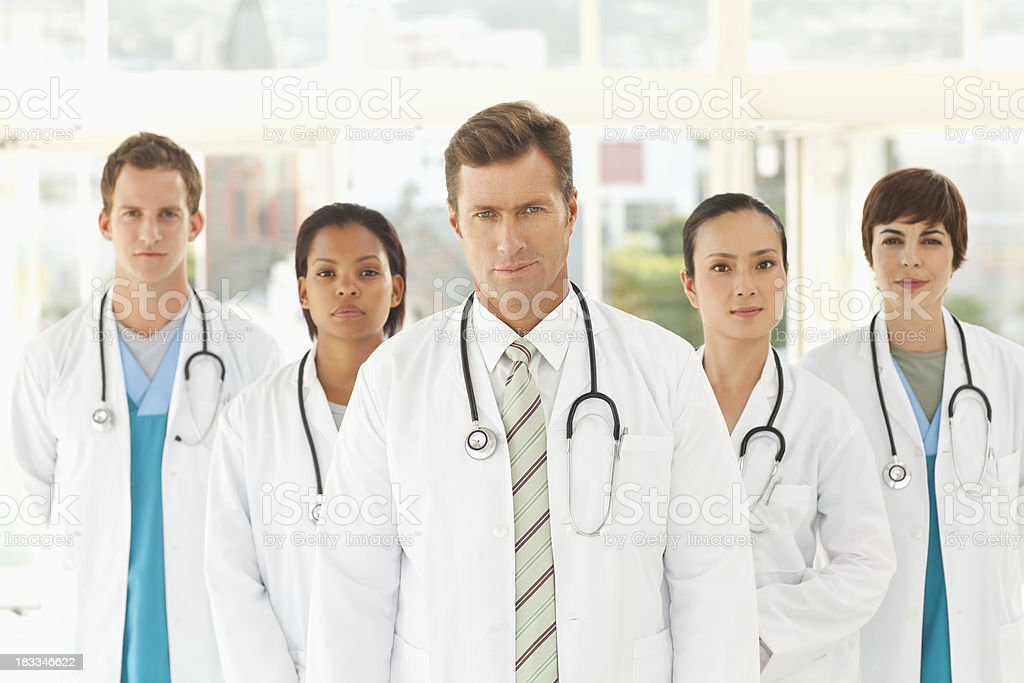 Doctor Group Portrait royalty-free stock photo