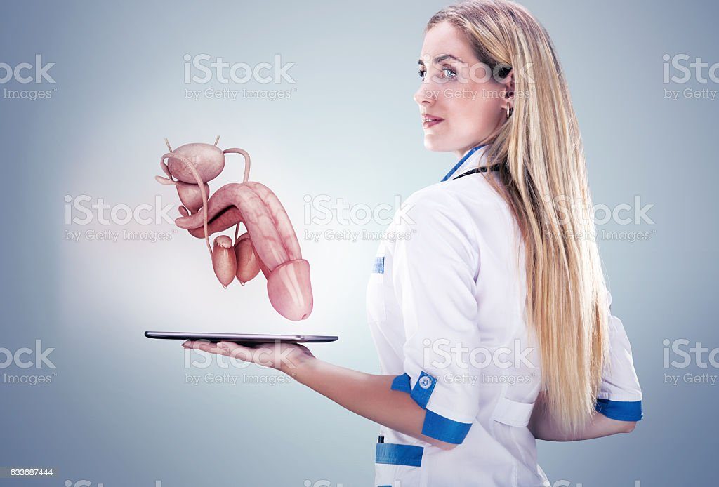 Doctor holding human organs ( penis) and tablet , gray background. stock photo