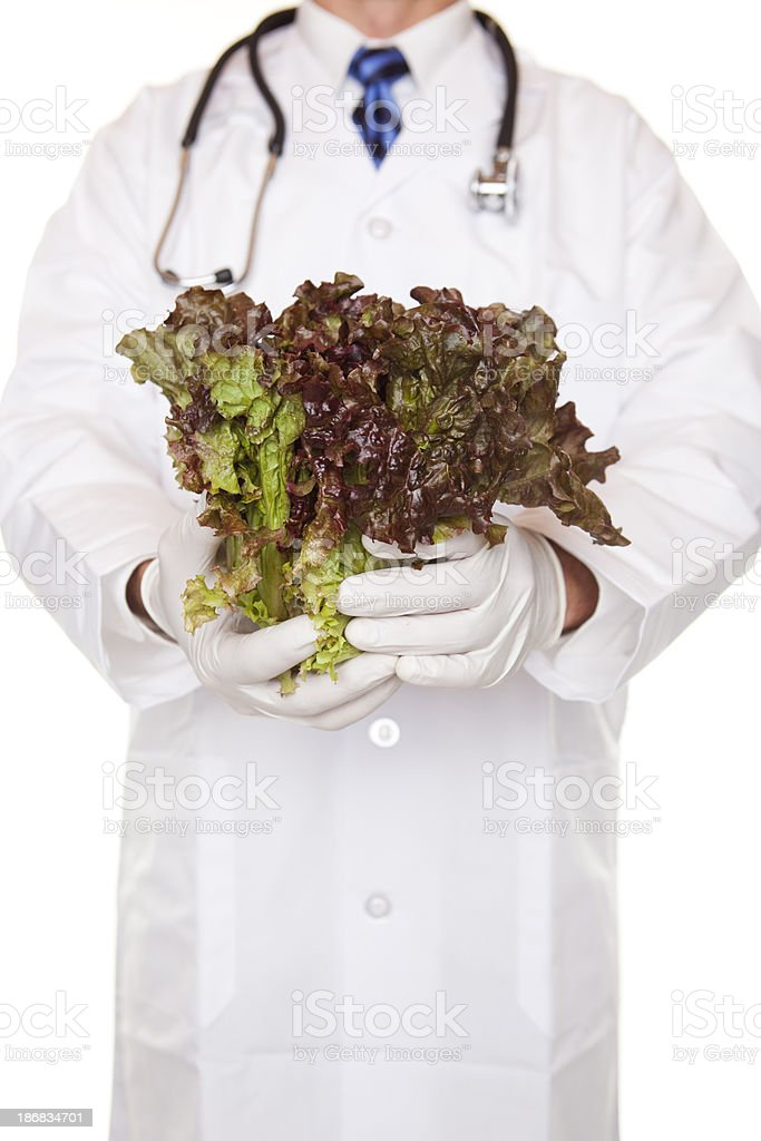 Doctor Holding Red-Tip Leaf Lettuce royalty-free stock photo