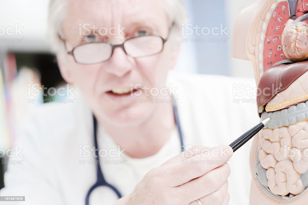 Doctor pointing at colon stock photo