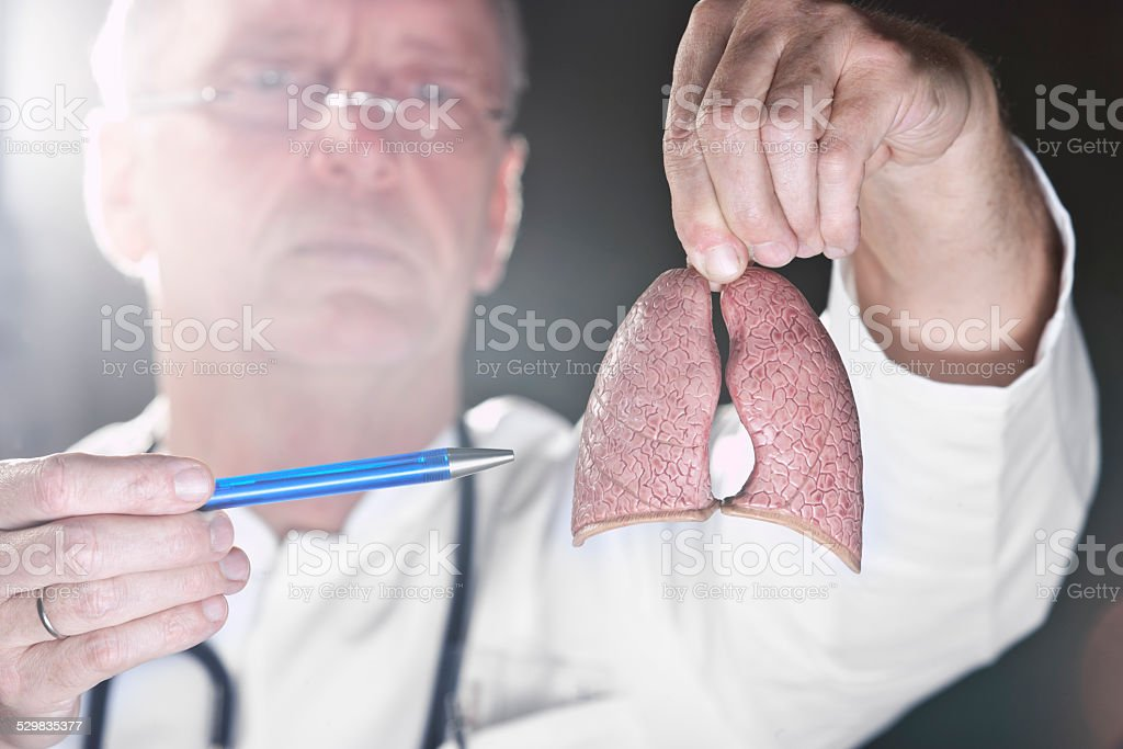 Doctor pointing at lung stock photo