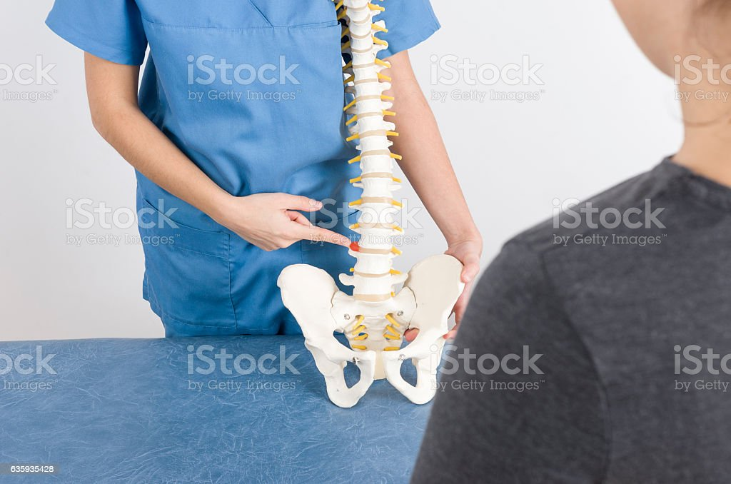 Doctor showing a hernia in a skeleton to a patient. stock photo