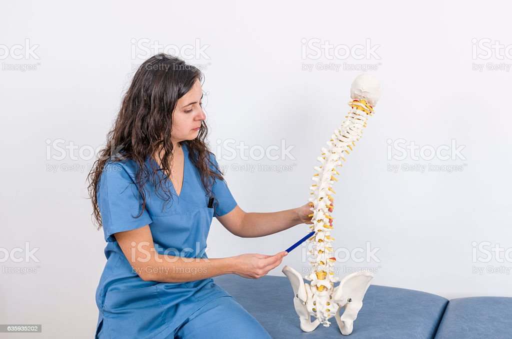 Doctor showing a skeleton to a patient. Back pain stock photo