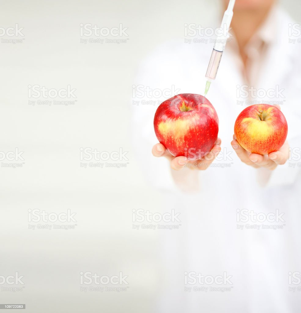 Doctor showing the difference in two apples after experiment royalty-free stock photo