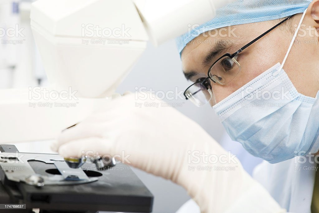 Doctor Using Microscope In Laboratory royalty-free stock photo