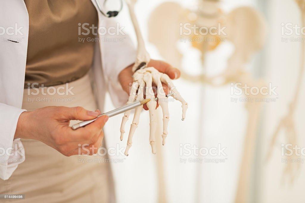 Doctor woman pointing on hand bone. Closeup stock photo