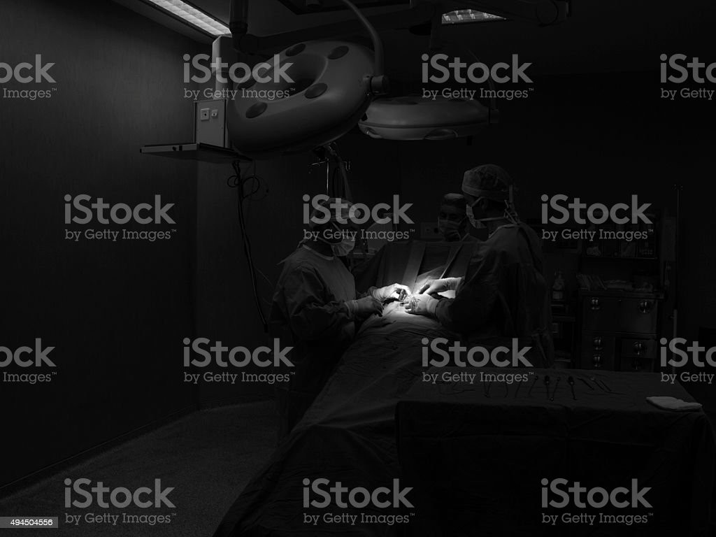 Doctors and nurses doing surgery in medical operating room stock photo
