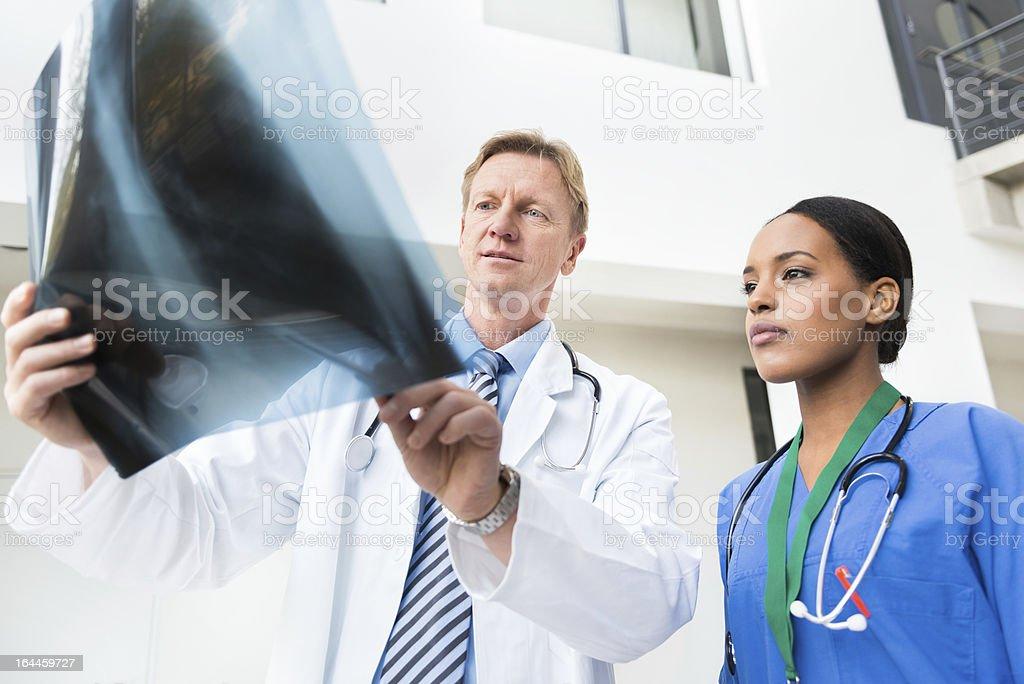Doctors Examining X-Ray royalty-free stock photo
