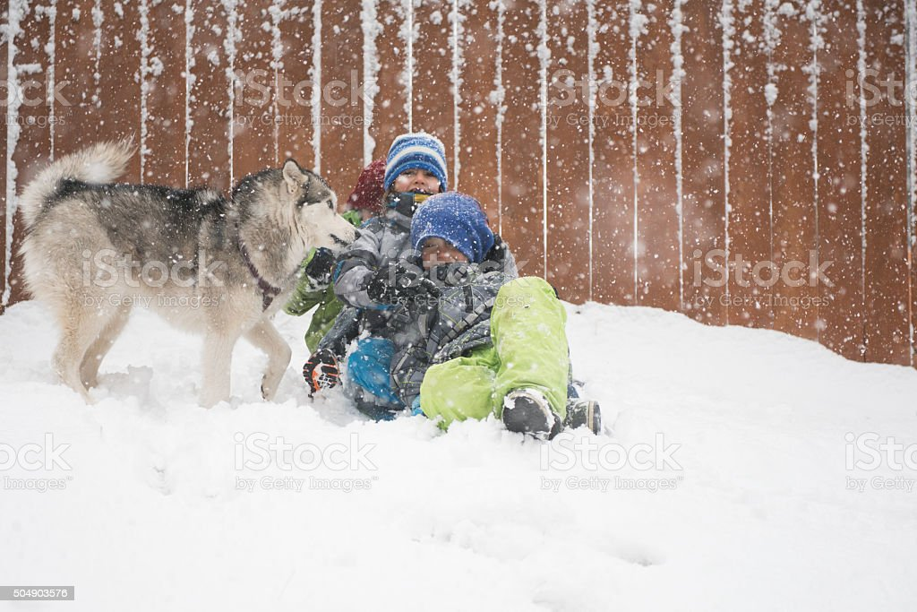 Dog and children play in the snow stock photo