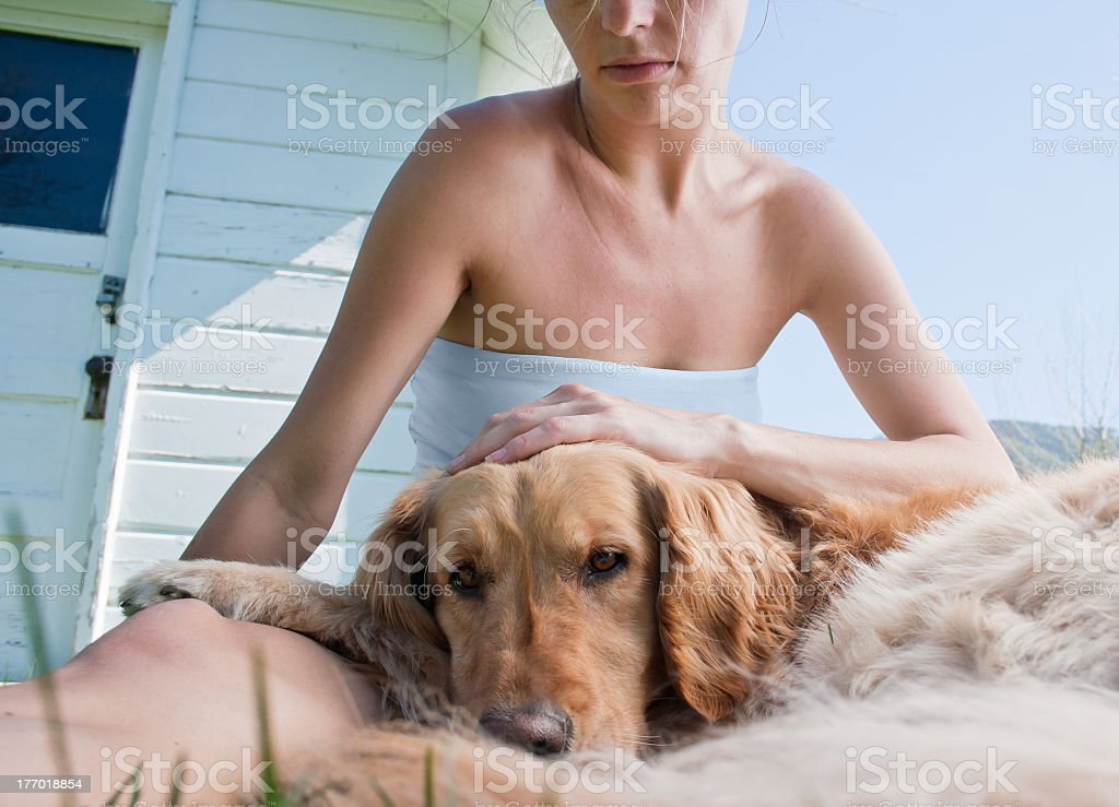 Dog and companion royalty-free stock photo