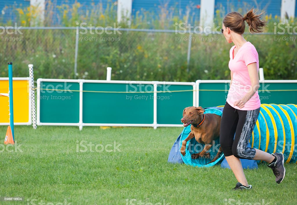 Dog and handler running together in agility competition stock photo