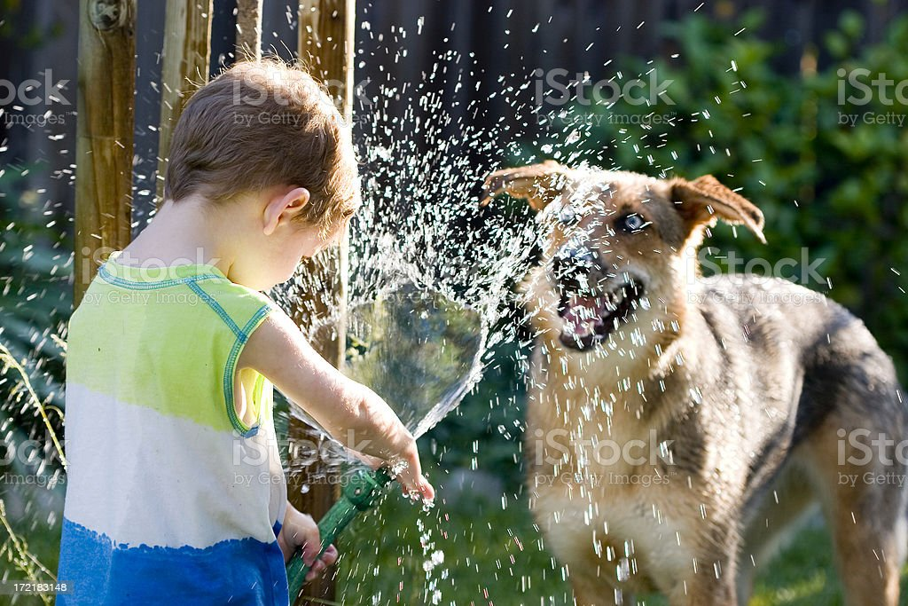 Dog and his Boy royalty-free stock photo