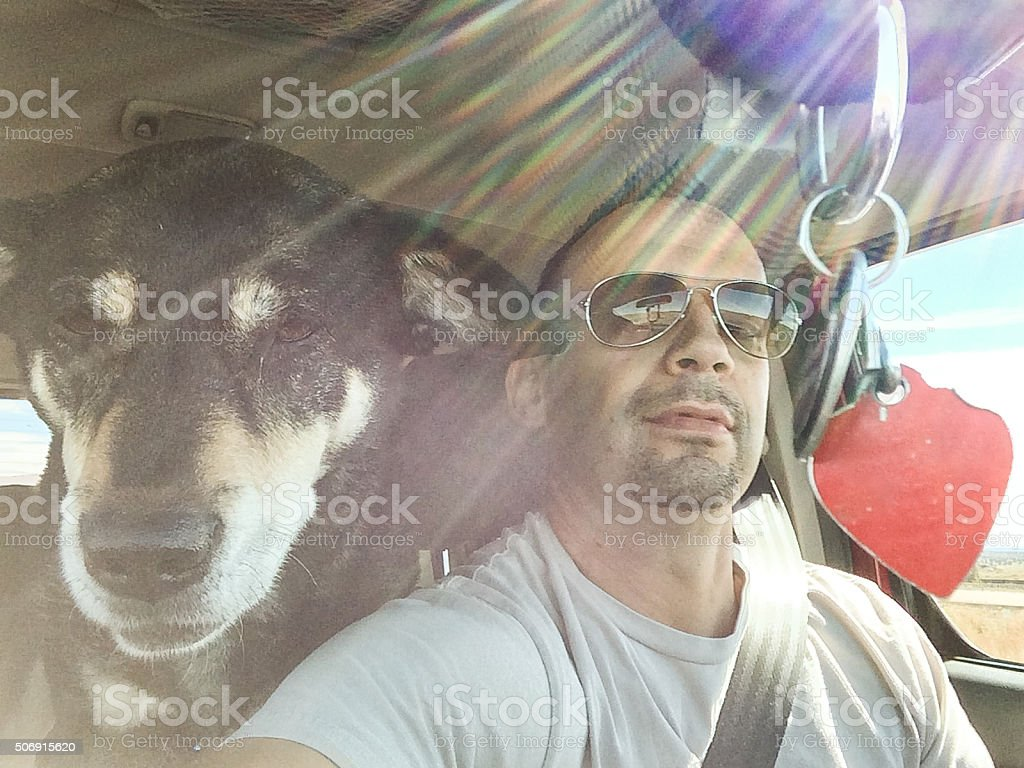 dog and man road trip heart stock photo