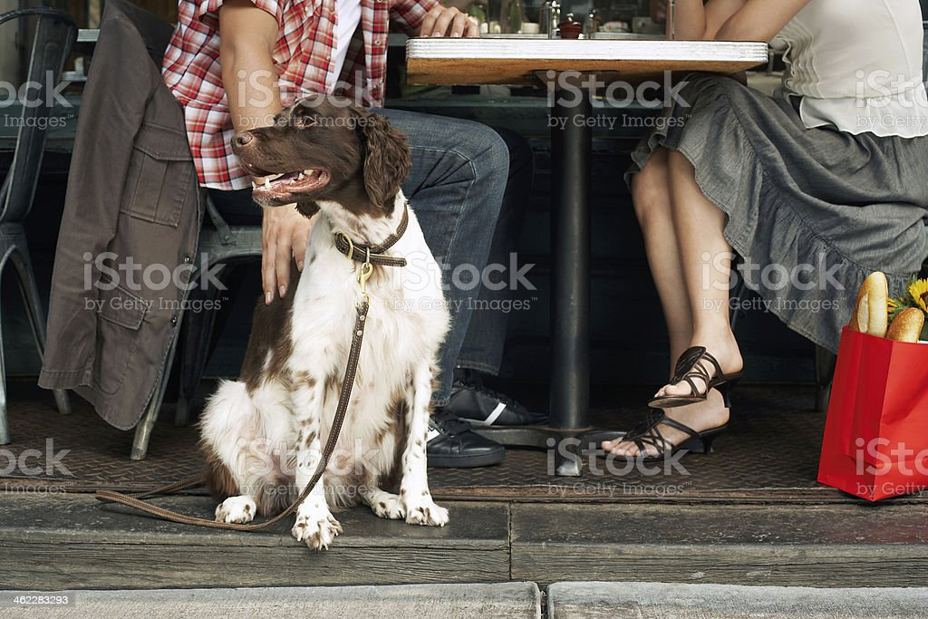 Dog and Owners Sitting at Sidewalk Cafe stock photo