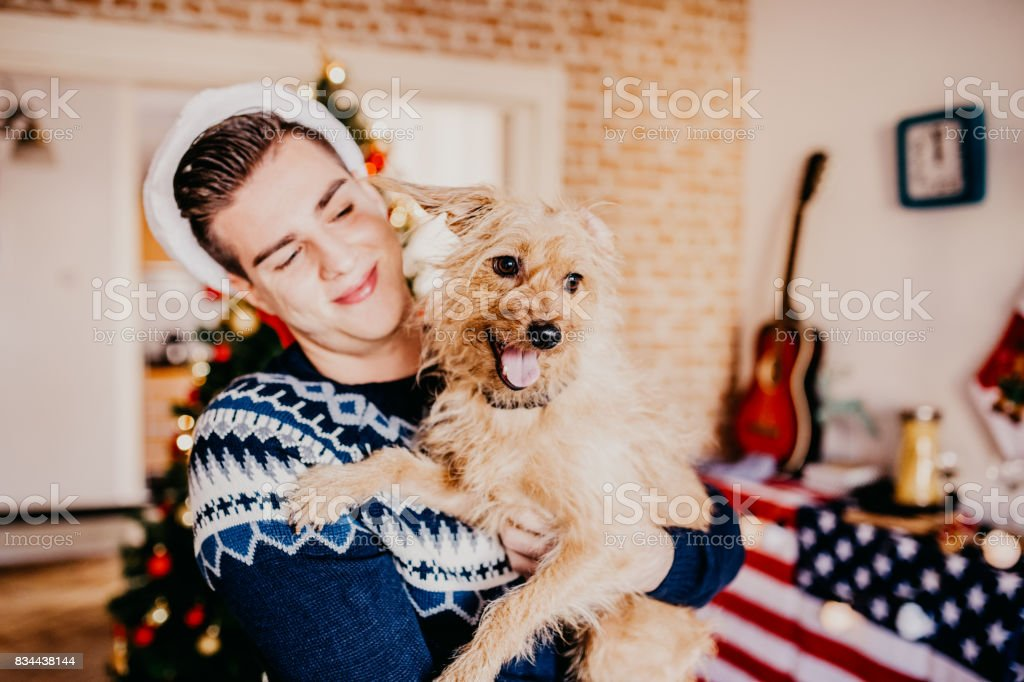 Dog and young man having fun in front of a Christmas tree stock photo