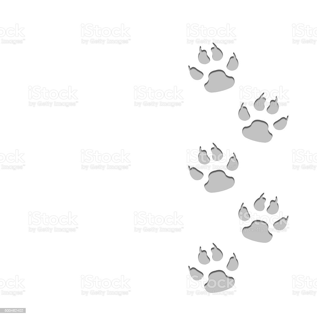 Dog animal traces on snow. stock photo