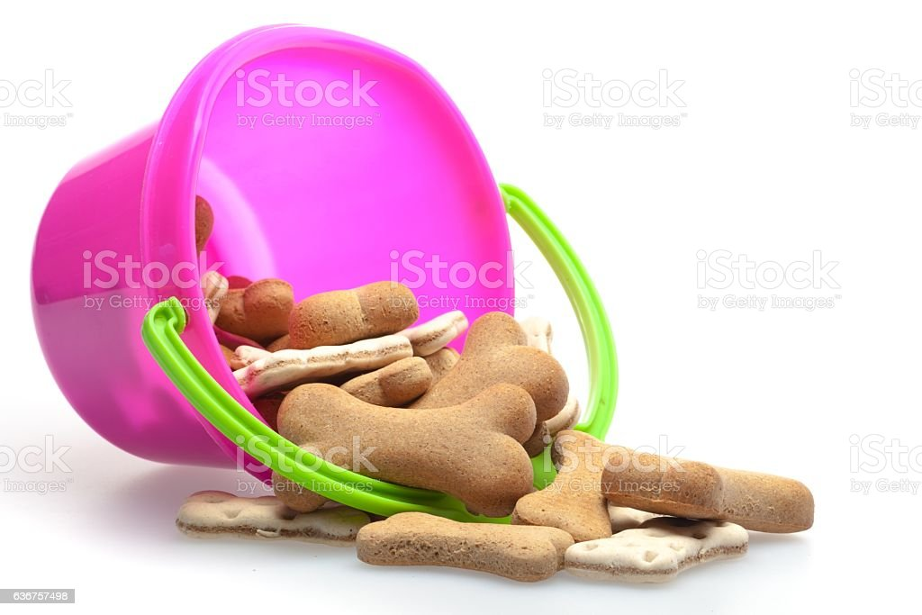 Dog biscuit stock photo