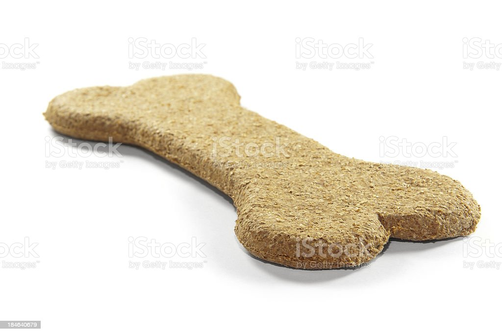 Dog bone stock photo