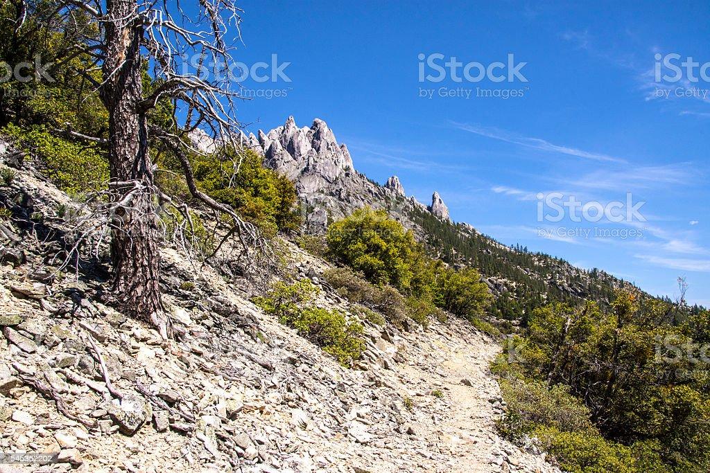 Dog Creek Trail stock photo