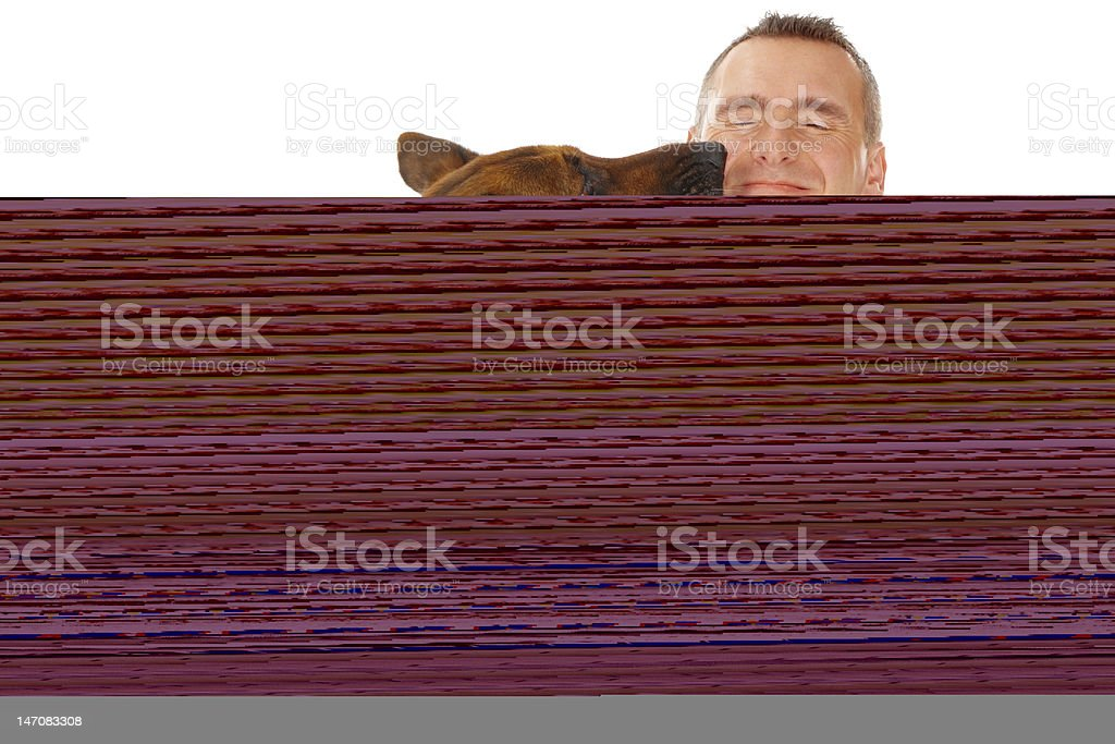 Dog eating from bowl royalty-free stock photo