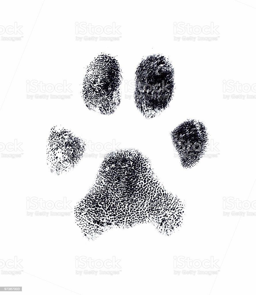 Dog fingerprint royalty-free stock photo