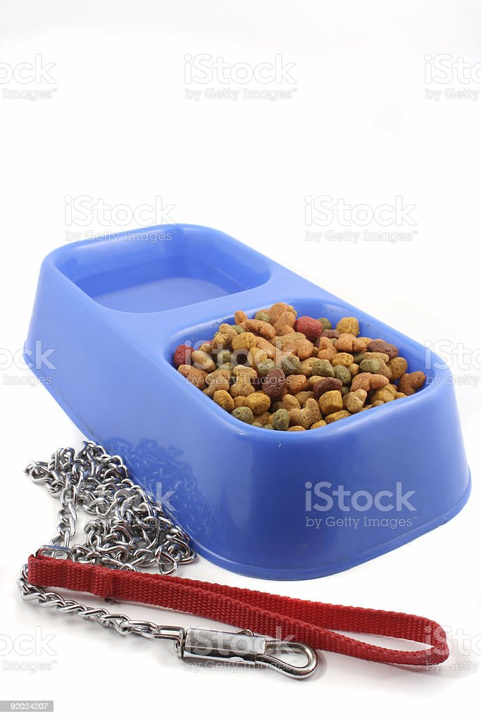 dog food and leash royalty-free stock photo