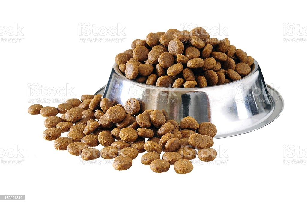 dog food in bowl stock photo