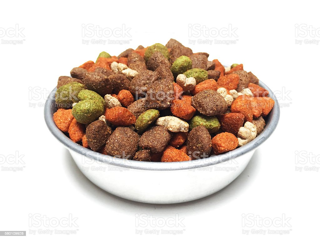 dog food in metal feeder stock photo