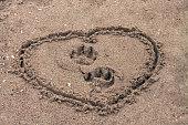 Dog footprints on sand inside painted heart