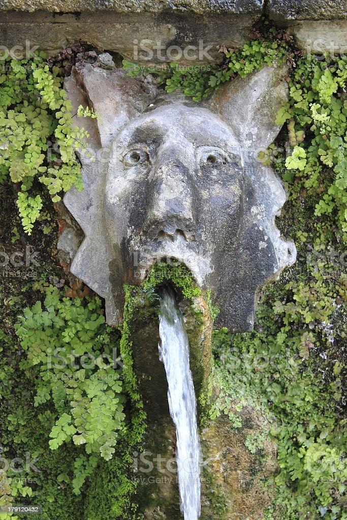 Dog fountain in Villa d'Este royalty-free stock photo