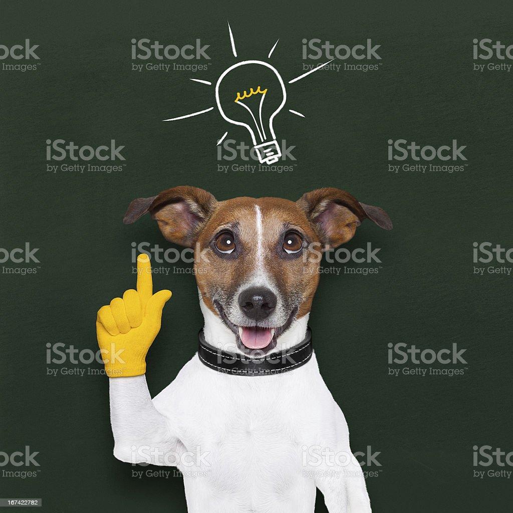 dog idea royalty-free stock photo