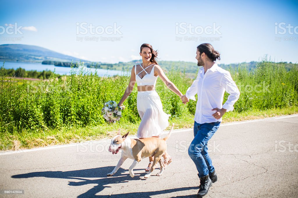 Dog is an important member of our family stock photo