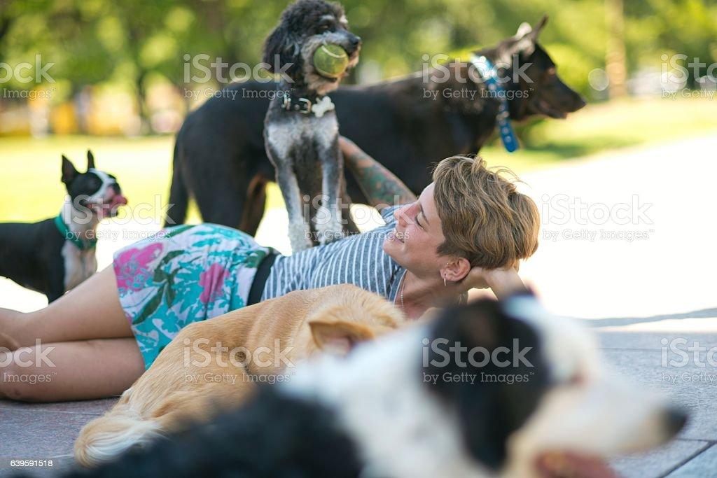 Dog keeper woman stock photo