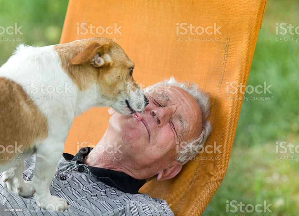 Dog kiss stock photo