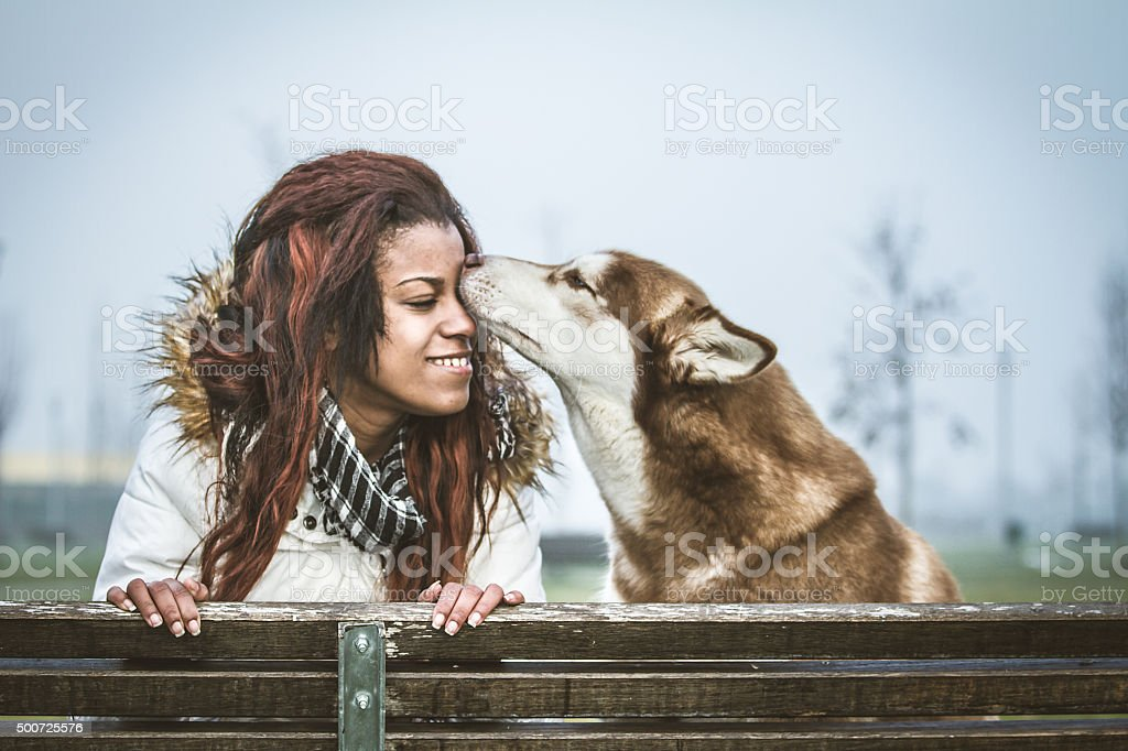 Dog kissing a young woman stock photo