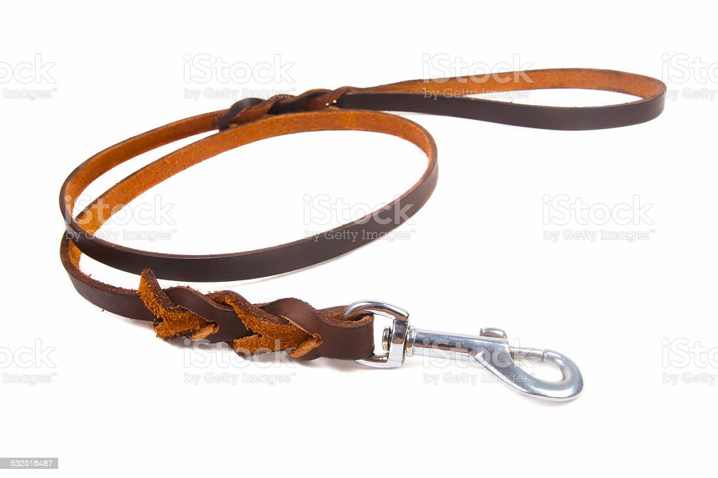 Dog leather leash stock photo