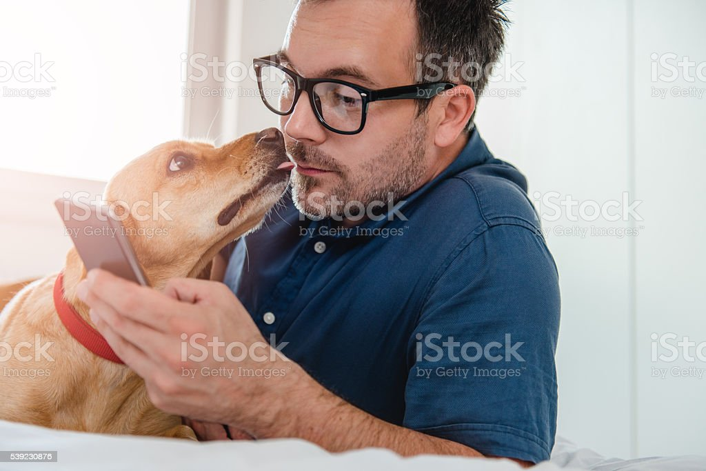 Dog licking man's face stock photo