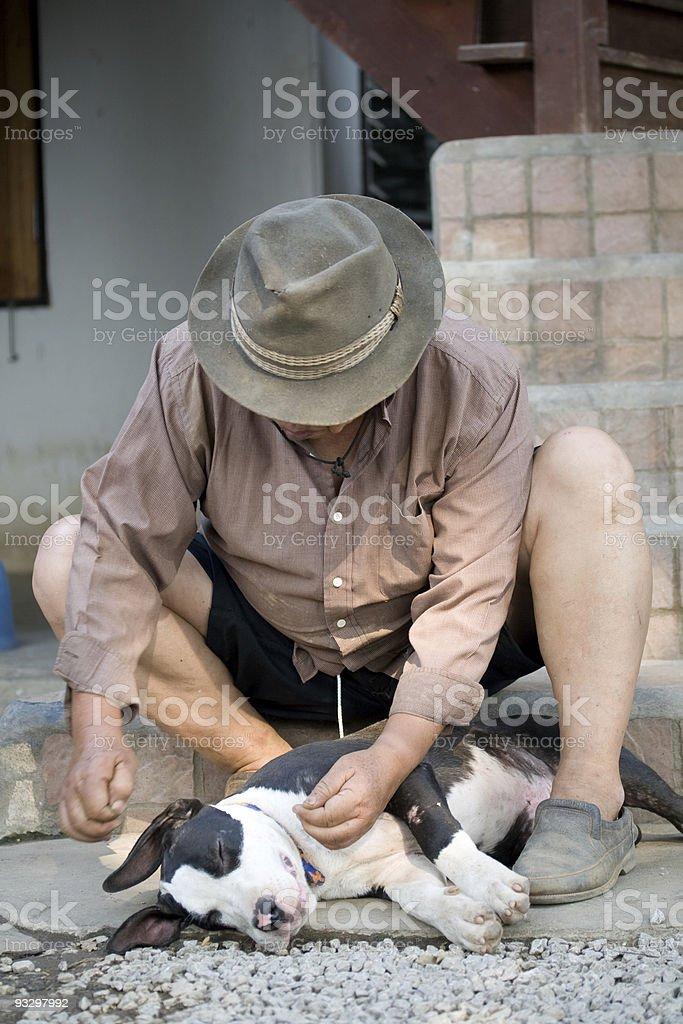 dog lover royalty-free stock photo