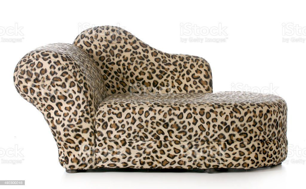 dog or cat bed stock photo