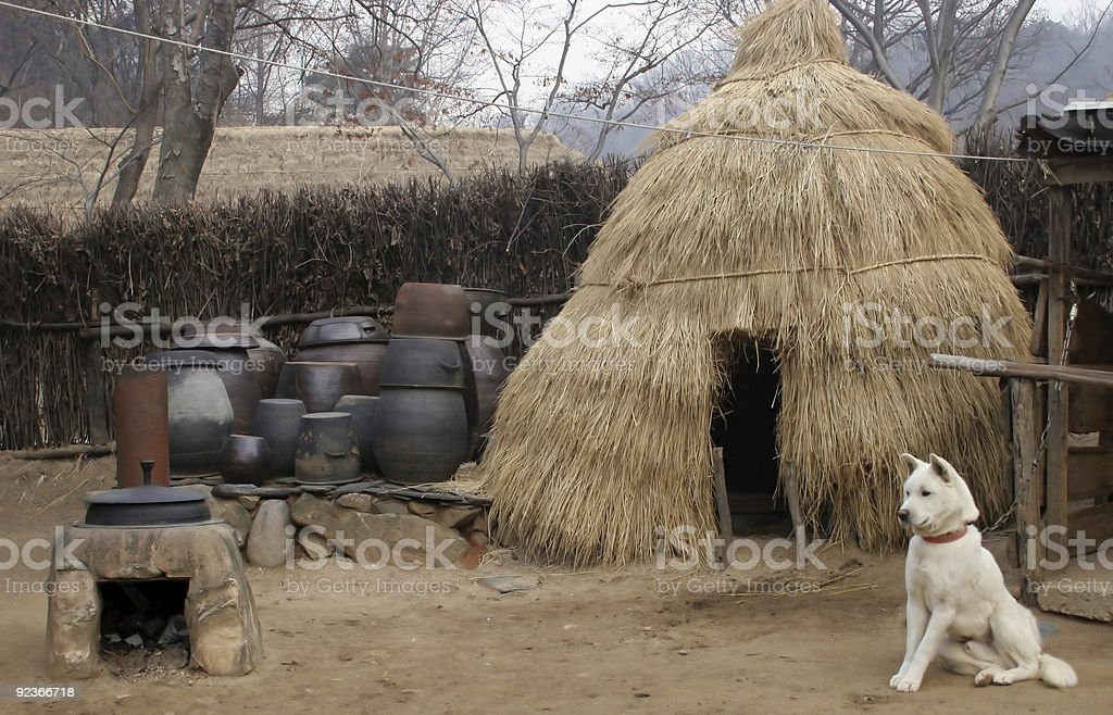 Dog outside a straw hut royalty-free stock photo