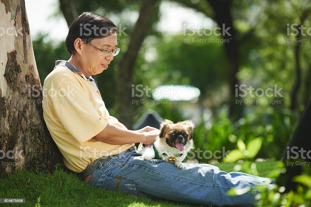 Dog owner stock photo