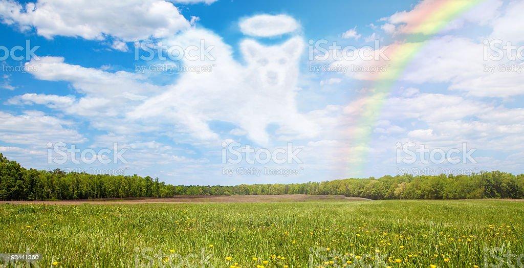 Dog Passing Over Rainbow Bridge stock photo