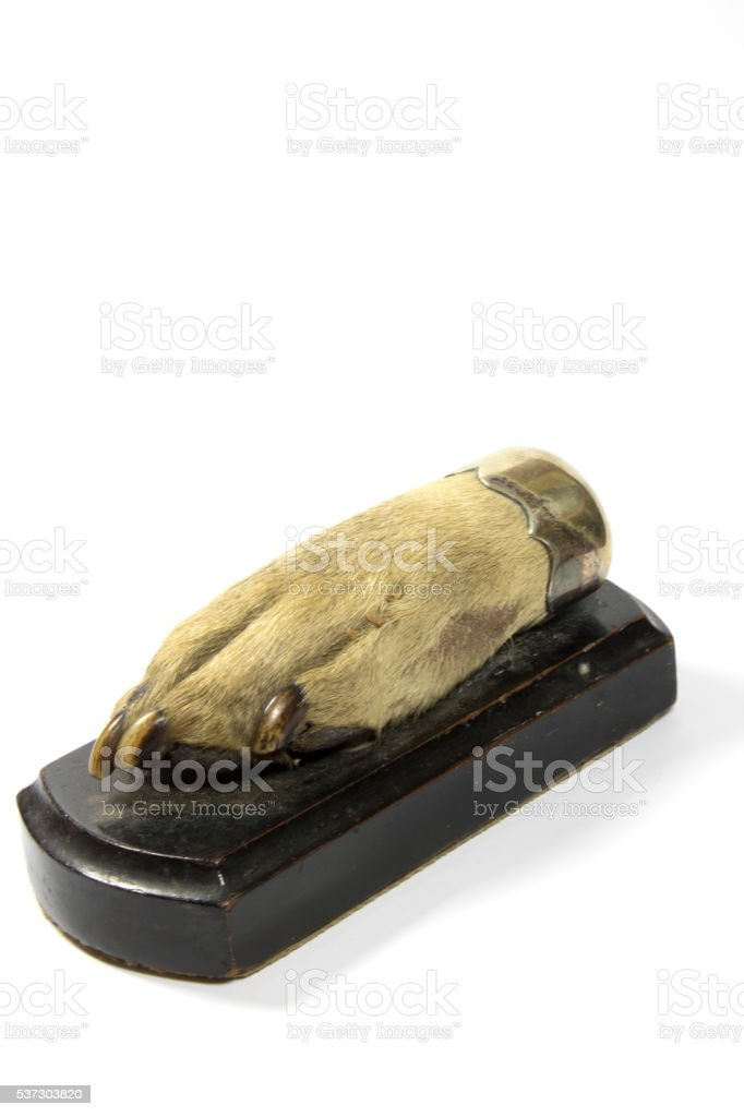Dog Paw Mounted on Wooden Plaque stock photo
