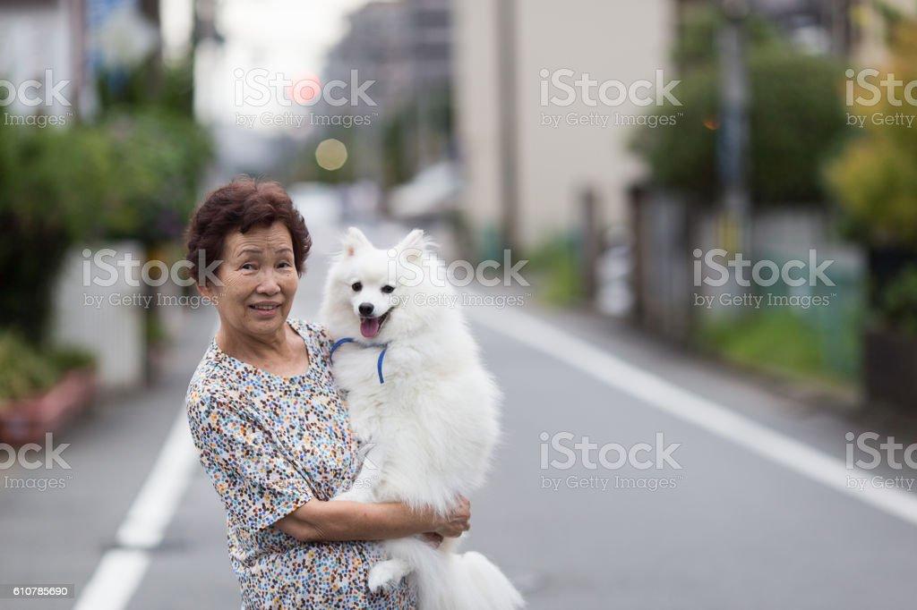 Dog pet and senior woman stock photo
