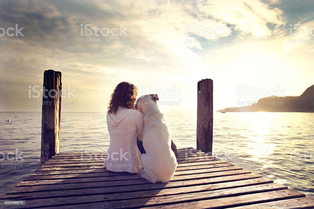 dog rests gently on his master's shoulder while looking view stock photo