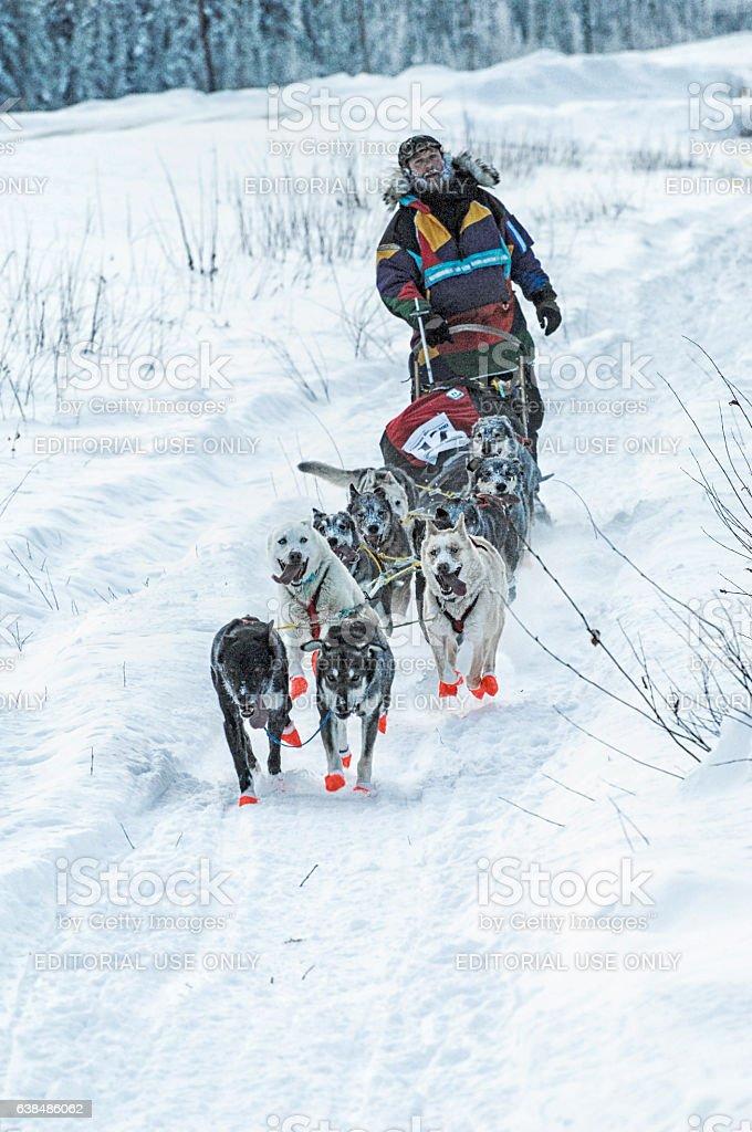 Dog Sled Race – Copper Basin 300 – Alaska stock photo
