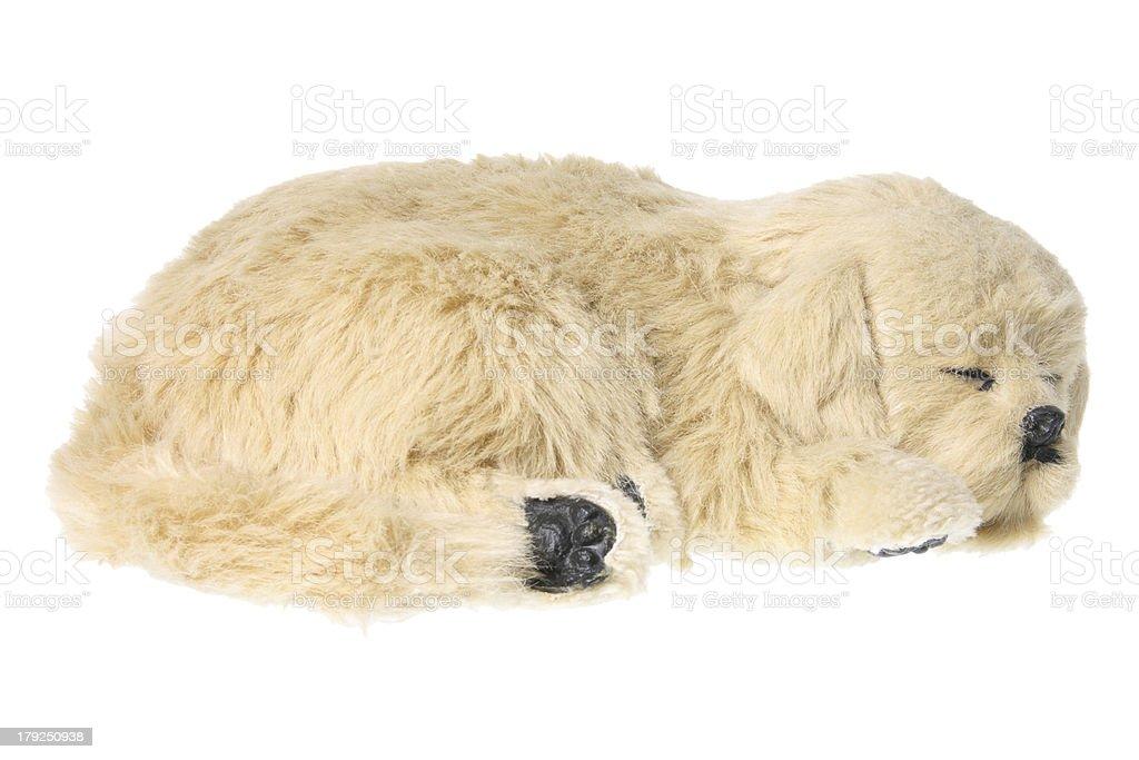 Dog Soft Toy stock photo