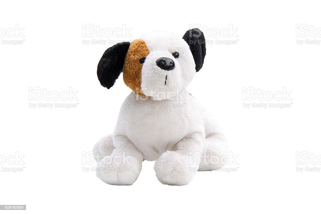 dog toy isolated stock photo