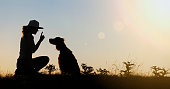 Dog training silhouette